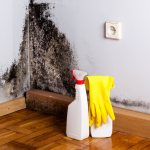 Mold Cleaning From Bathroom